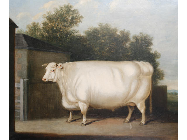 Follower of William Henry Davis (British, ?-1865) A prize white bull standing beside a farmyard gate