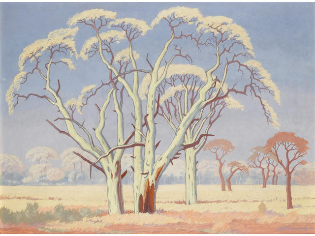 Jacob Hendrik Pierneef (South African, 1886-1957) Acacia trees in the veld