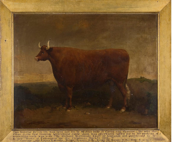 English School, circa 1838 A Prize Devon Ox
