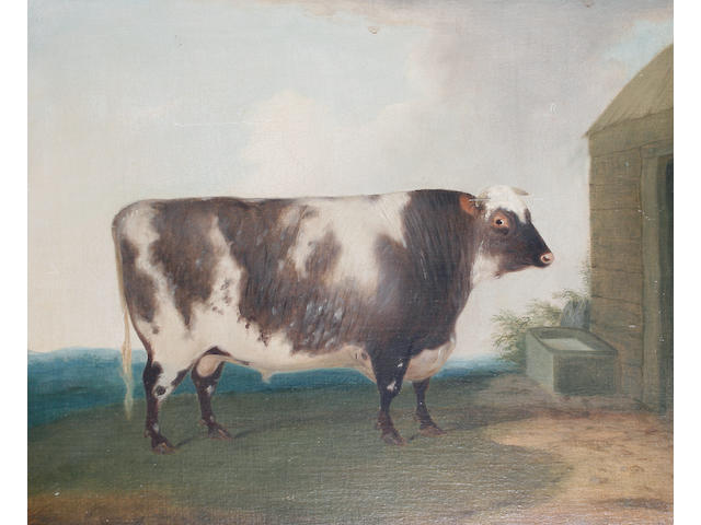 English School, 19th Century A prize bull standing beside a water trough