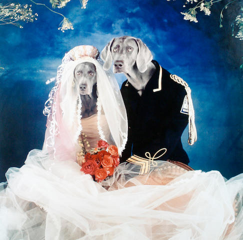 William Wegman (American, born 1943) 'Love', 2003