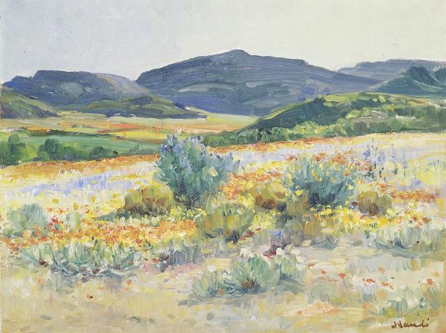 Pieter Hugo Naudé  (South African, 1869-1941) Spring flowers, Namaqualand