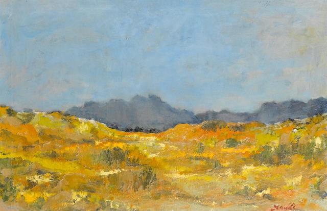 Pieter Hugo Naudé  (South African, 1869-1941) Spring, Cape Flats