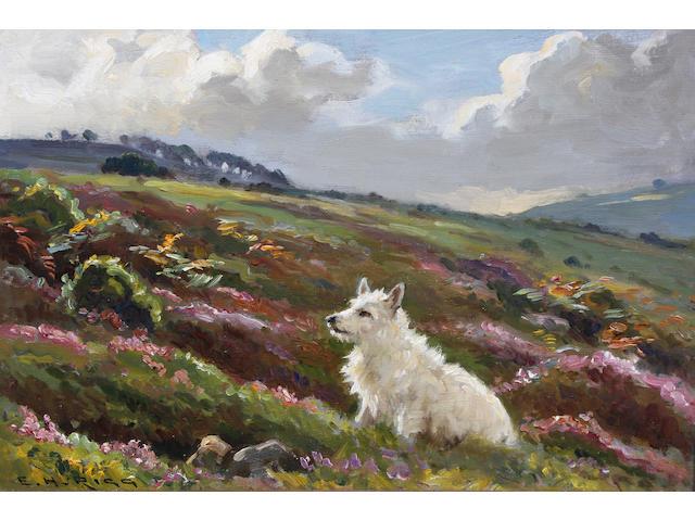 Ernest Higgins Rigg (British, 1868-1947) 'Cappie' - a West Highland terrier 27 x 35cm.