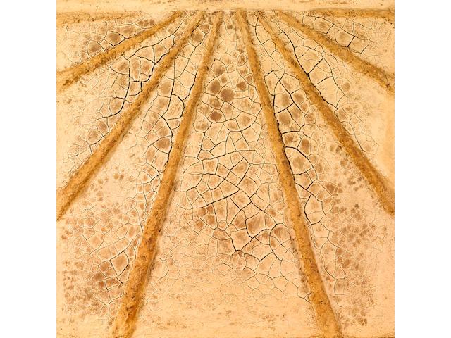 Marcos Grigorian (Iran, 1925-2007) Dry Farm