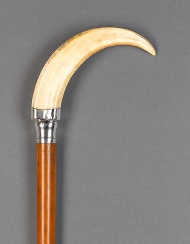 An Edwardian silver and boar's tusk mounted walking stick, by Charles Dumenil for Brigg, London 1909,