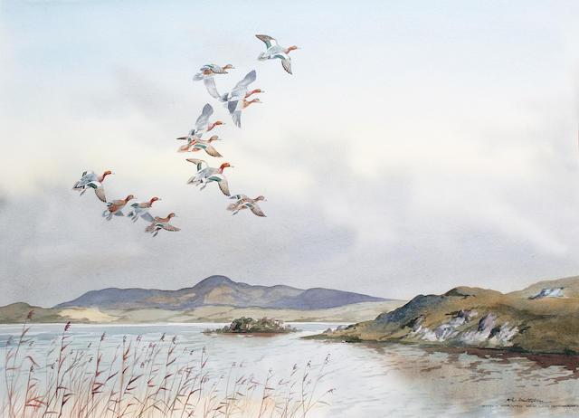 Robert W. Milliken (British, born 1920) 'Widgeon Arriving New Lake Dunfanaghy'