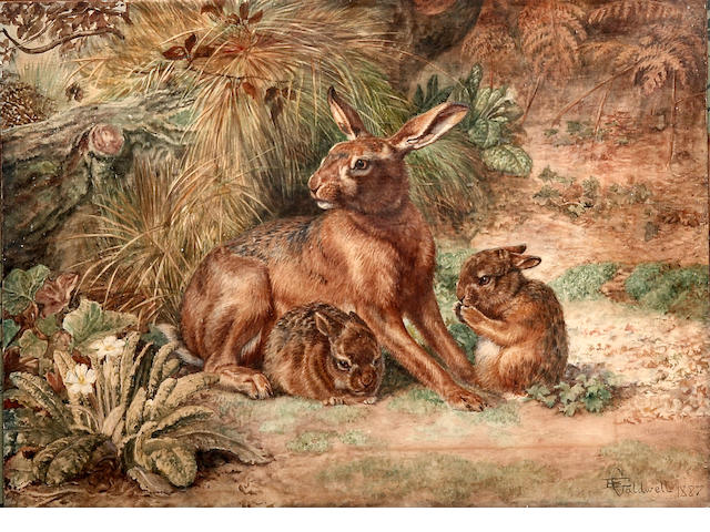 Edmund Caldwell (British, 1852-1930)   study of a hare and two leveretts, signed and dated 1887 lower right, 27 x 37cm