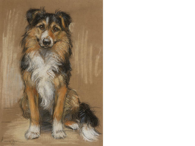 Marion Rodger Hamilton Harvey (British, 1886-1971) A Collie