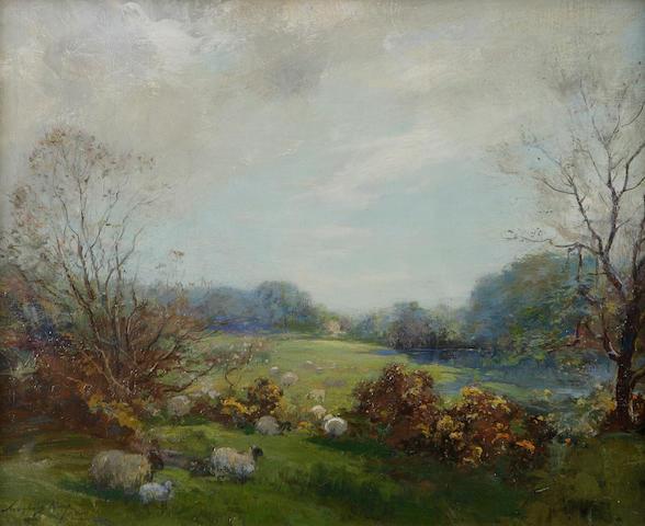Archibald Kay, RSA RSW (British, 1860-1935) Sheep in a summer pasture