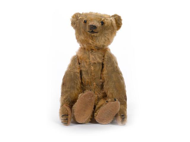 Rare Steiff PB Rod Teddy bear, 1904-05