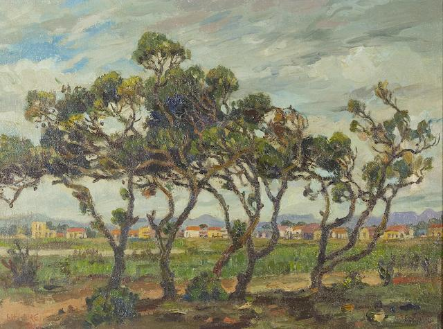 Gregoire Johannes Boonzaier (South African, 1909-2005) 'Windswept trees, Mowbray Flats, Cape, Winter'