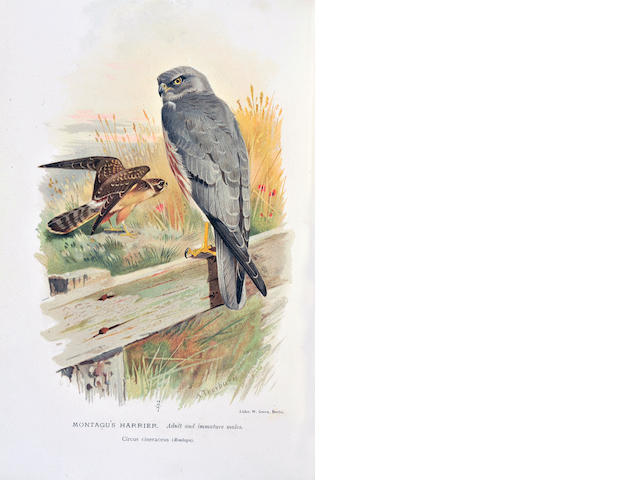LILFORD (THOMAS L. POWYS, Lord) Coloured Figures of the Birds of the British Islands, 7 vol.