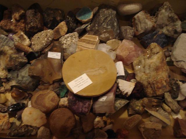 A quantity of geological specimens