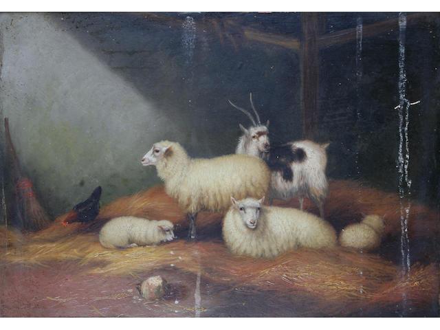 H. Jackson (British, circa 1900) Sheep in a barn,