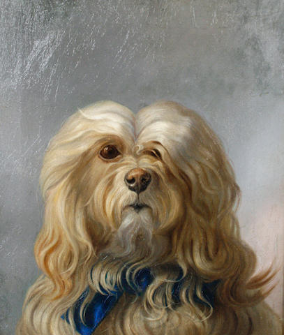 Follower of George Earl (British, 1824-1908) Maltese Terrier 36 x 31cm (14 3/16 x 12 3/16in).