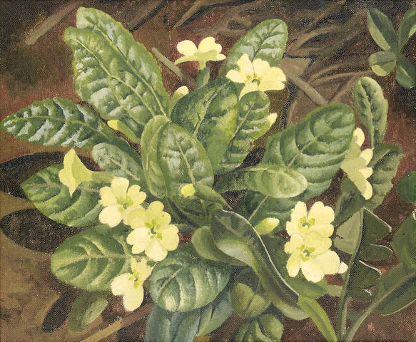 Sir Stanley Spencer R.A. (British, 1891-1959) Primroses 23 x 28 cm. (9 x 11 in.)