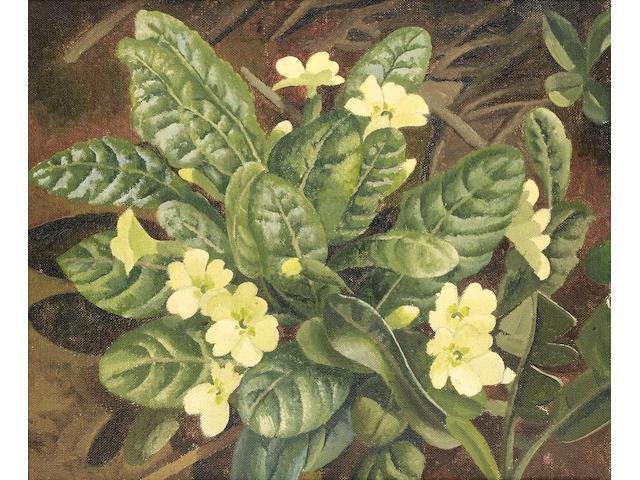 Sir Stanley Spencer R.A. (British, 1891-1959) Primroses 23 x 28 cm. (9 x 11 in.)