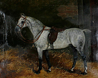 Arthur Batt (British, 1846-1911) Potrait of a grey in a stable