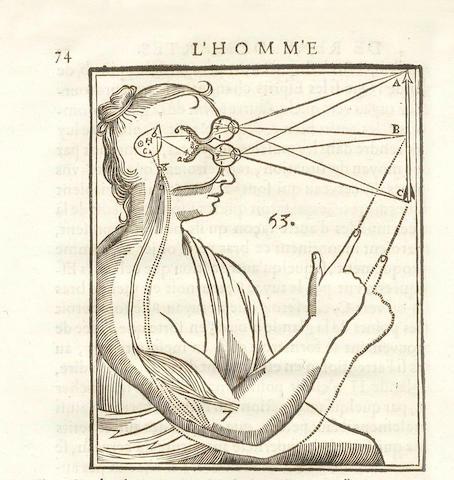 DESCARTES (RENÉ) L'homme de René Descartes et la formation du foetus avec les remarques de Louis de la Forge