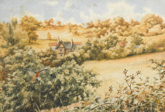 "Dr Edward Wilson- A view of ""The Crippetts"" with kestrel."