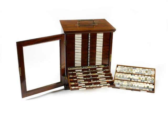 A fine and comprehensive collection of mainly professional mounted microscope specimen slides, English, circa 1865,