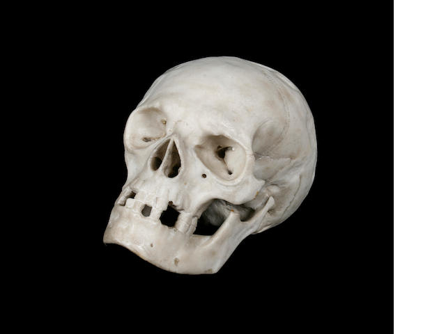 A carved white marble study of a human skull