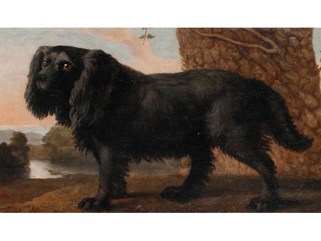 English School, 19th Century Spaniel in a landscape
