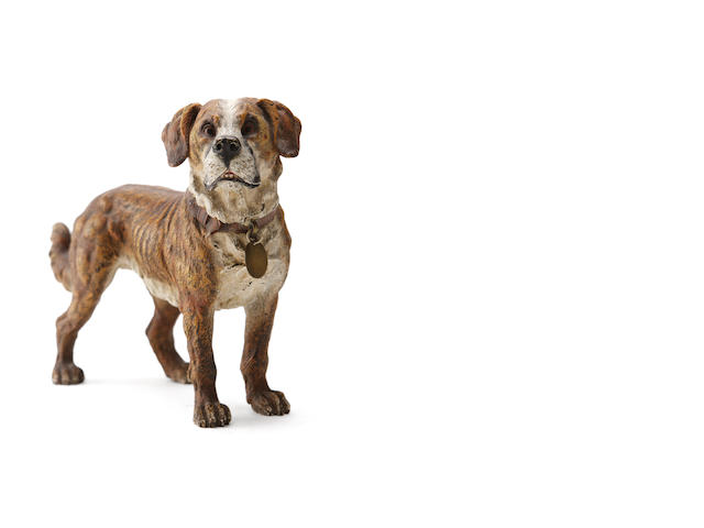 An Austrian cold painted bronze figure of a St. Bernard, in the manner of Franz Bergmann