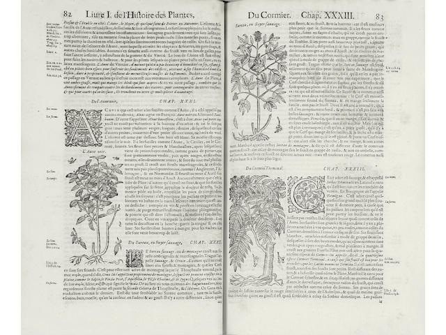 DALECHAMPS (JACQUES) Histoire generale des plantes contenant XVIII livres, 2 vol.