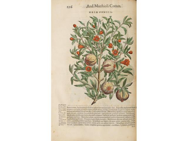 MATTIOLI (PIETRO ANDREA) Commentarii in libros sex Pedacii Dioscoridis Anazarbei de medica materia
