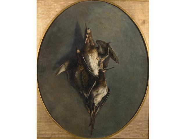 English School, 19th Century Still life of dead birds 58 x 48cm Oval.
