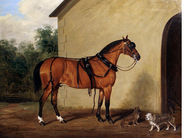 James Loder Of Bath (British, 1784-1860) A carriage horse with two terriers in a yard