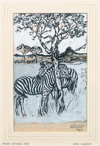 Harry Stratford Caldecott (South African, 1886-1929) Zebras grazing in the Kruger