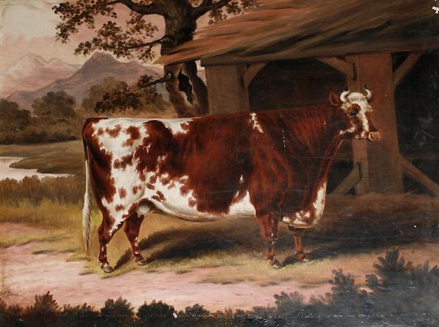 Samuel Spode (British, fl.1825-1858) A prize cow