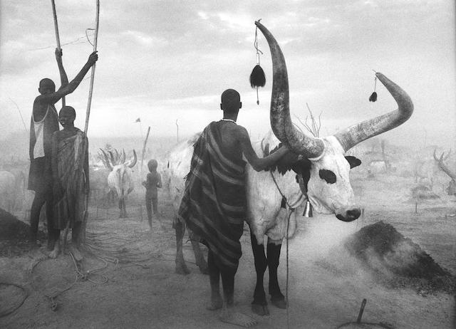 Sebastião Salgado (Brazilian, born 1944) Dinka Group at Pagareu Cattle Camp, Southern Sudan, 2006 Paper 59.9 x 89.8cm (23 9/16 x 35 3/8in), image 53.9 x 74.2cm (21 1/4 x 29 3/16in)