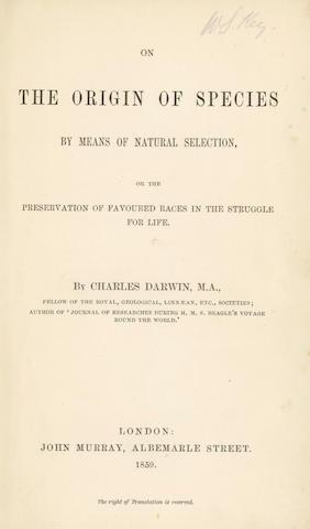 DARWIN Origin