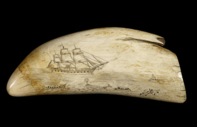 A large whale's tooth scrimshawed with whaling scene, mid 19th century, 8.5in (22cm) long