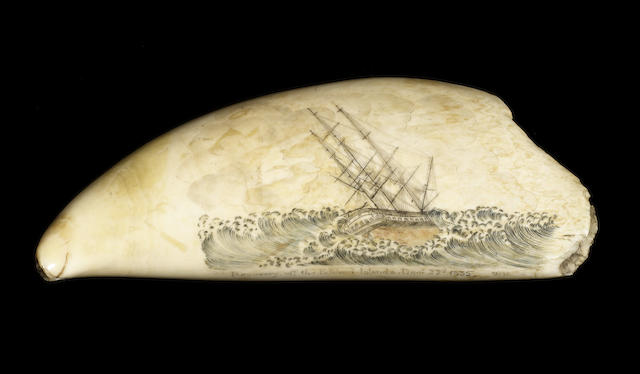 A finely scrimshawed and polychromed whale's tooth, dated 1835, 8in (20cm) long.