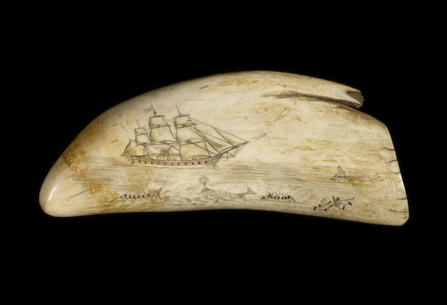 Large scrimshawed whale's tooth, mid 19thC, decorated with whale hunting scene and whaling ship 22cm