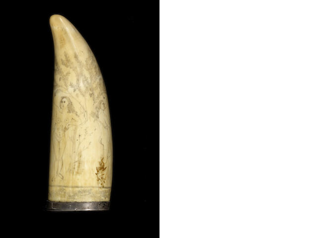 A scrimshawed whale's tooth snuff mull,  circa 1880,  6in (15cm) high; weight 250 gms