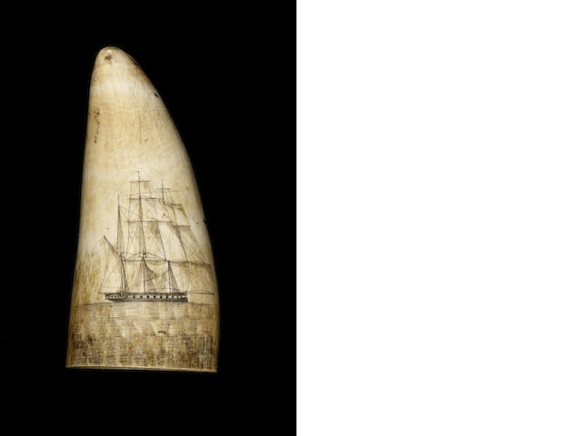 A pair of scrimshawed whale's teeth,  mid 19th century,  5in (13cm) high, weight 750 gms