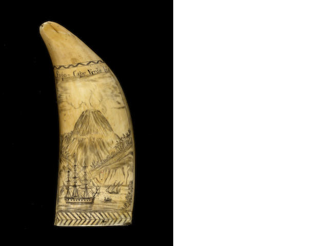 A finely engraved scrimshawed whale's tooth,  mid 19th century,  6 3/4in (17cm) high; weight 500 gms