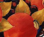A Moorcroft Pomegranate pattern dish
