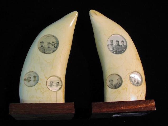 A pair of whale's teeth, 6.3in(16cm)high each 2