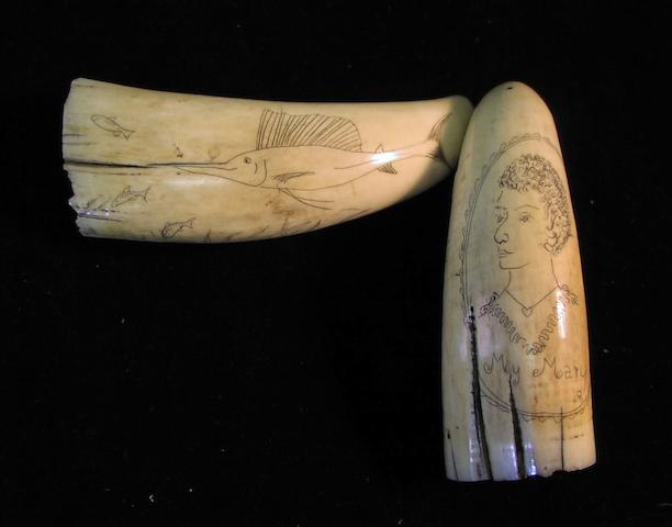 A pair of small 19th century decorated whale's teeth,  4in(10cm)long, each. 2