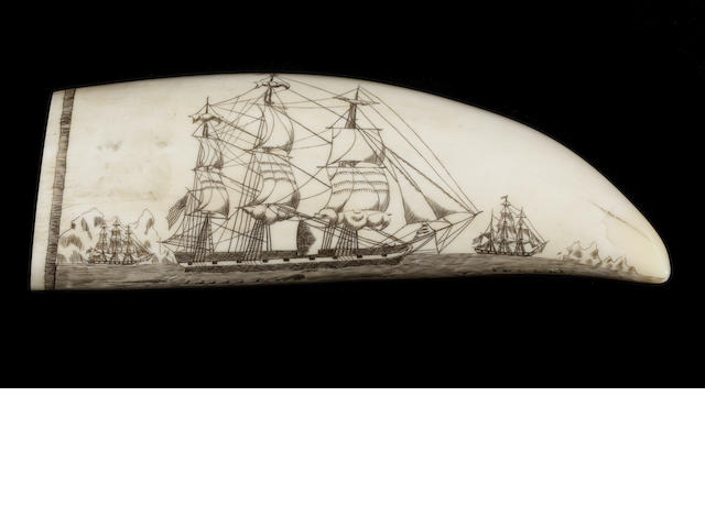 A scrimshaw decorated whale's tooth, post 1947.   5.5in(14cm)long.