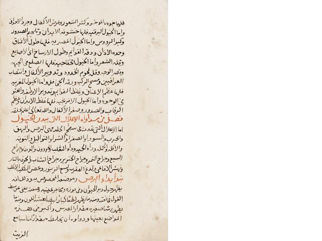 Al-Hakim Abu-Bakr bin al-Munthir Badr-al-din al-Bitar, Kitab Kashif al-Wayl fi ma'rifat wa ilaj al-khayl, a treatise on the diseases of horses and their remedies Ottoman, probably Egypt, dated AH 1167/AD 1753