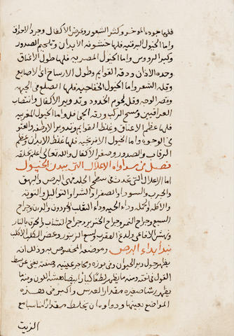 Al-Hakim Abu-Bakr bin al-Munthir Badr-al-din al-Bitar, Kitab Kashif al-Wayl fi ma'rifat wa ilaj al-khayl, a treatise on the diseases of horses and their remedies Ottoman, probably Egypt, dated AH 1167/AD 1753