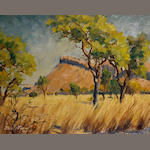 Emily Fern - Bushveld, oil on board